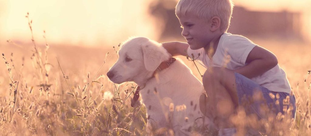 A boy kneeling next to his dog.  The image underscores the fact that Aspen Pest Control applies a foundation barrier that is friendly for kids and pets.