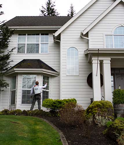 A pest control technician exterminating stink bugs by spraying in the eaves of a home.