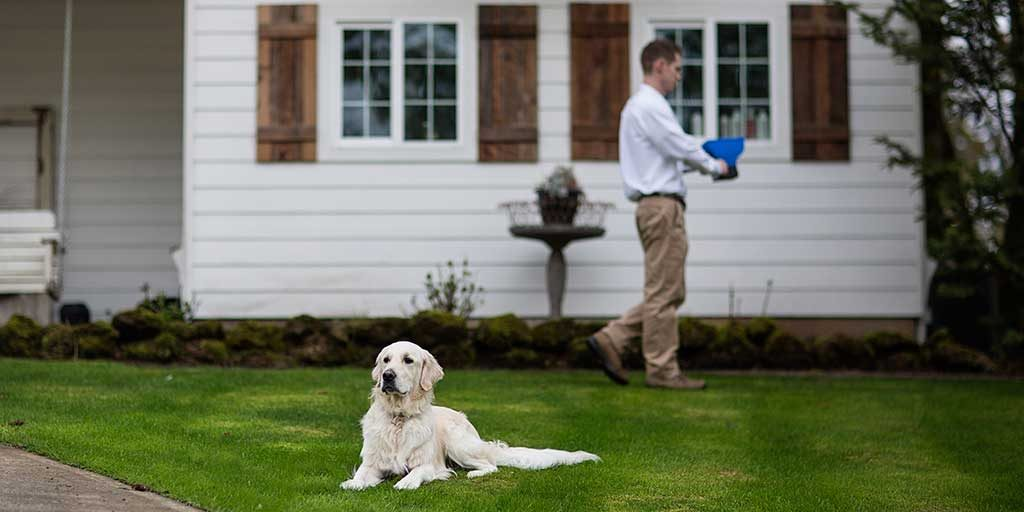 A pest control technician is granulating a yard in Camas, WA