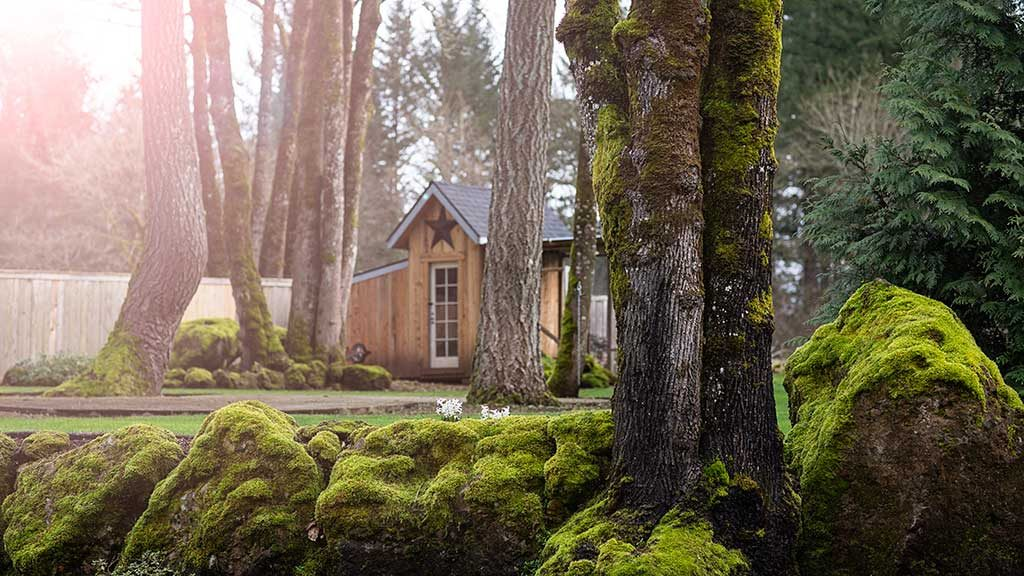 A beautiful photo of a residential landscape in Camas.