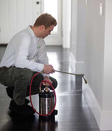 A pest control serviceman using a handheld sprayer to help with flea removal in Camas, WA